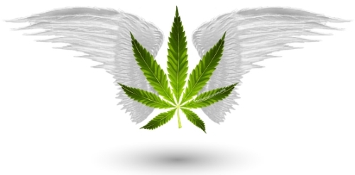 500x-edited-marijuana-games-home-page-image