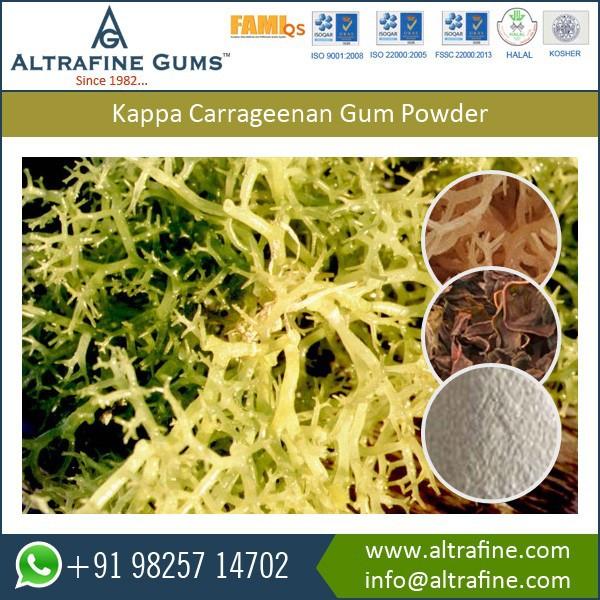 kappa-carrageenan-gum-powder