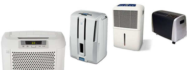 best dehumidifier for basement
