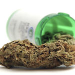 The Medical Marihuana Act Of Michigan